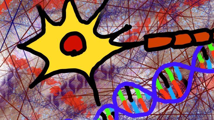 うつ病 イライラの原因と抑える方法 セロトニンを増やすことがなぜ重要か